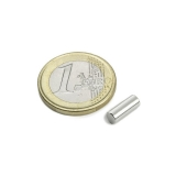 Neodymium barmagnet  T-4x10   1,32 pound