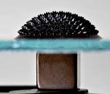 Ferrofluid 0,70 Fluid Ounces